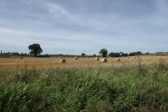 View from the Coventry canal (mattgilmartin) Tags: countryside hay bale trees sky