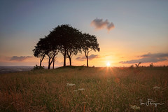 An Old Favorite ( Ian Flanagan) Tags: copt hill houghtonlespring sunset sunburst trees mound sevensisters grass golden photography