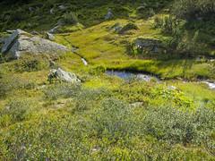 P8200009 (turbok) Tags: bach berge donnersbach landschaft planneralm wasser c kurt krimberger