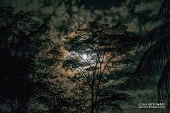 Night sky - DSC_9457 (nickybay) Tags: singapore chestnutavenue night sky clouds