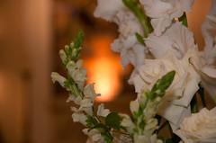 02 (Maria Viriato Decoracoes) Tags: decoração belohorizonte bh casamento clubecampestre decoraçãodecasamento juliocesar novalima photoobjetiva