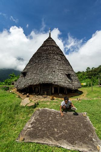 Coffee Farmer of Wae Rebo