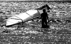 Windsurfer Silhouette (Paul Reay) Tags: black white watersports sailing windsurfing windsurfer marine lake silhouette sails wetsuit waves water waterfront