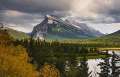 Mt. Rundle (Jerry Ting) Tags: mtrundle vermilionlakes banffnationalpark alberta canada bighornsheep