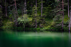 Weissensee (bloeemb) Tags: bergsee mountainlake biberwier green water forest