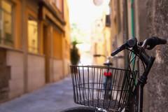 ritorno a pisa (mat56.) Tags: citt city pisa toscana sfocato bicicletta biciclette strada vicolo street bicycle blurred antonio romei mat56 trash can cestino ritorno return bokeh