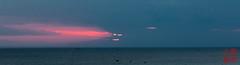 Demonic sun? (DragonSpeed) Tags: africa emersononhurumzi indianocean stonetown sunset tzday10 tanzania zanzibar face zanzibartown zanzibarurbanwestregion tz