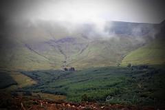 under the weather... (ggcphoto) Tags: feelingabitundertheweather irishlandscape low cloud mountains forestry nature hiking outdoor galtees serene