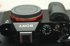 Sony A7 (bing bong 90) Tags: mirrorless mirrorlesscamera camera sony sonya7 a7 fullframe
