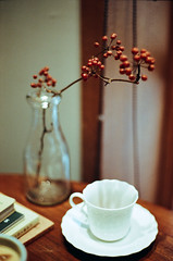 Jack & Nana Coffee (Mr.Sai) Tags: rolleiflex sl35me rollei 50mm f18 hft qbm fuji 100 analog film     taiwan taipei cafe coffee