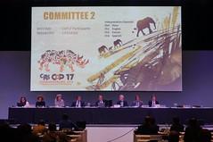 #CoP17 Tue 26 Sept 2016 (CITES Secretariat) Tags: cop17 cites