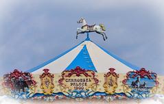 colours again! (simo m.) Tags: carousel giostra cavalli