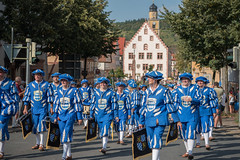 Landesfestumzug Bad Mergentheim 2016 - 2