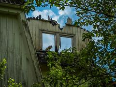 Sanat-A (56) (wilhelmthomas58) Tags: fz150 hdr sanatorium harz abandoned lostplaces