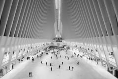 Oculus (PhotoToasty) Tags: oculus newyork wtc worldtradecenter transport station bw architecture