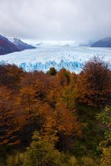 13970347548_f236ec65c9_o (FelipeDiazCelery) Tags: argentina patagonia perito moreno glaciar calafate