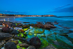 Bondi Moss (silardtoth) Tags: water australia bondi aspect 23 background beach beachscape blue coast exposure iceberg icebergs landscape long nature new south wales night nsw ocean pool rock rockpool rocks sea seascape stairs sunset swim travel vacation aspect23 newsouthwales