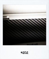 """#DailyPolaroid of 18-4-12 #202 • <a style=""""font-size:0.8em;"""" href=""""http://www.flickr.com/photos/47939785@N05/6956550442/"""" target=""""_blank"""">View on Flickr</a>"""