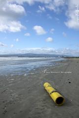 Bull Island (Lugh Ri) Tags: ireland sea dublin irish strand mare eire spiaggia dublino irlanda sabbia bullisland lucapascoletti