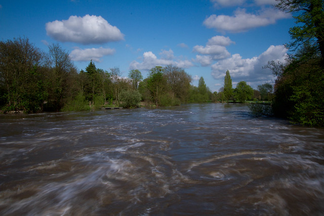 The Thames, from the Caversham Weir looking downstream
