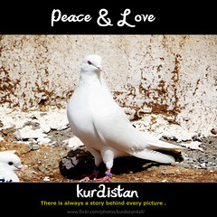 Wen kurdistan (Kurdistan Photo ) Tags: wen kurdistan loves photo kurdish kurds pic newroz kurd kurdistan4all16031608158515831587157815751606 turkish iraq iran barzani sefti peshmerga irak kurdene kurdistan4ever turkey kurdphotography photography peshmerge photojournalism love collection landscape  republic  syria baghdad country tigris euphrates akkadian sumerian assyrian babylonian