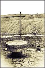 Memory lane (irenaradinovic) Tags: blackandwhite stone vineyard croatia grapes oldtown istria istra groznjan