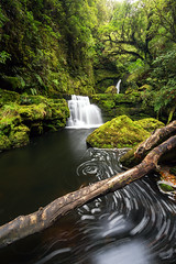 McLean Falls (Luke Tscharke) Tags: park longexposure newzealand green forest landscape waterfall movement nz april catlins froth mcleanfalls