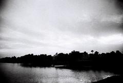 Ilford silhouette (kevin dooley) Tags: bw white black film analog 35mm blackwhite lomo lomography dusk grain grainy chandler 3200 ilford eximus eximuswideandslim