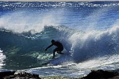 _DSC4208 (Mark J Sampson) Tags: surf sydney australia surfing nsw northernbeaches shootthesurf