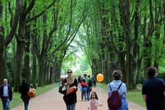 People walking in Serralves park, Porto, Portugal, Europe (Joao.Pires) Tags: travel portugal europe porto serralves serralvesemfesta2012