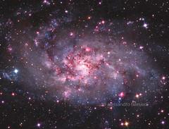 Messier 33 (algol72) Tags: Astrometrydotnet:status=solved Astrometrydotnet:version=14400 Astrometrydotnet:id=alpha20120939021427