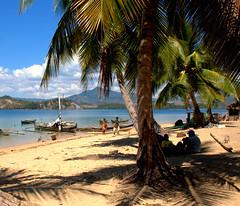 all'ombra di una palma (giulifff) Tags: madagascar indiano oceano mamoko