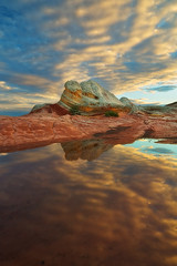 Reflected - White Pocket, Vermillion Cliffs Wilderness (D Breezy - davidthompsonphotography.com) Tags: summer arizona water clouds reflections sandstone monsoon whitepocket usavermillioncliffswilderness