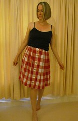 Red Gingham Picnic Skirt (Sewingdina) Tags: picnic skirt blanket