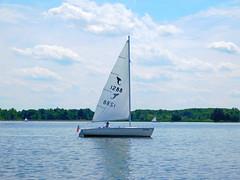 Sailboats (Larry the Biker) Tags: park summer lake water june sailboat boat sailing michigan sailors sail stonycreekmetropark washingtontownship