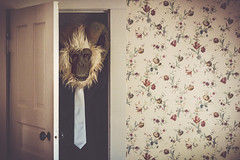 demoted to closet monster duties (L. Paul) Tags: sonya6300 sony a6300 wallpaper door mask creepymask monkeymask shirtandtie closet closetmonster monsterinthecloset