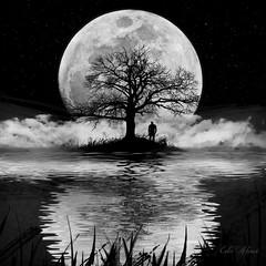 mood (Edu Alawi) Tags: blackandwhite mood composite reflection moon night water