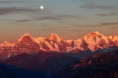 Moonrise on Eiger (Photo_Flow) Tags: moon mond alps alpen landscape landschaft abend evening sunset sonnenuntergang 7dii eiger mnch jungfrau gletscher berneroberland sommer 2016 peaks glacier