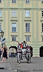 DSC_0090n wb (bwagnerfoto) Tags: fiaker wien vienna hofburg austria sterreich horse tourism urlaub urban outdoor travel selfie