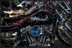 Love For Motorcycles (Ernie Misner) Tags: dragraces pacificraceways washington erniemisner nikon d800 nik onone10 cnx2 capturenx2 f8andbethere
