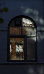 blue (dotintime) Tags: blue cobalt indigo chalk brick wall window reflection tree leaves shadow autumn wavy glass dotintime meganlane