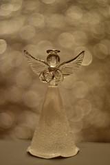 DSC_5152 (Milena Z) Tags:          442      angelo angel colore color luce giocodiluci ombra bokeh helios helios442 manuallens senzafiltri vladikavkaz