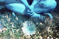 film (La fille renne) Tags: film analog 35mm lafillerenne mx doubleexposure multipleexposure ebs exposingbothsidesofthefilm bluescale minoltax700 50mmf2 lomography lomochrome lomochrometurquoise lomochrometurquoisexr100400 splitzer blue turquoise flowers people