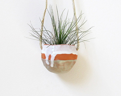 Hanging Pinch Pot With Filifolia Air Plant (Michael McDowell (mudpuppy))  Tags: