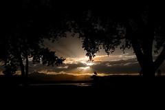 McIntosh sunset (Rocky Pix) Tags: county foothills mountain rockies colorado pix longmont tripod rocky boulder f16 55mm agriculture nikkor pastoral hygiene highway66 mcintoshlake rockypix normalzoom 1400thsec wmichelkiteley 2470mmf28f28g mcintoshlohragriculturalmuseum