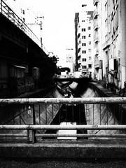 River Shibuya (Simon*N) Tags: monochrome japan lumix tokyo shibuya olympus 日本 風景 omd 日常 m43 em5
