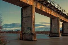 Bridge Graffiti (Nicks.Place) Tags: bridge newzealand water canon river eos ashley rustic scenic rusty rail canterbury nz rustyandcrusty rangiora nicksplace canterburynz 60d ringexcellence dblringexcellence tplringexcellence eltringexcellence