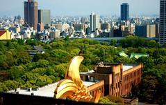 Fish and bird gazing Osaka (aoiharu) Tags: above city urban bird high view panoramic osaka osakacastle