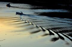 L'aratura dell'Arno (fiumeazzurro) Tags: toscana bellissima aplusphoto flickraward lamiciziafaladifferenza anthologyofbeauty sailsevenseas allegrisinasceosidiventa theauthorsplaza authorsclub luglio2012challengewinnercontest
