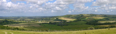 Arundel Park View (Worthing Wanderer) Tags: summer june westsussex sunny southdowns downland arundelpark arunvalleywalk